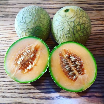 Impress with great looking and tasting melons when using Sertia Soils amendments in your garden