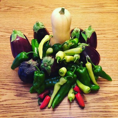 Improve yield of all garden vegetables by mixing in VermiCast or Cast and Frass into soil